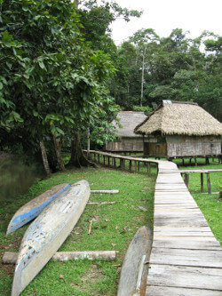 Ecotourism lodges in the rainforest