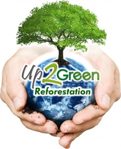 Up 2 Green - reforestación