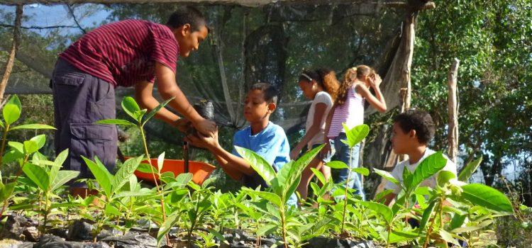 Des enfants sont impliqués dans nos projets de reforestation