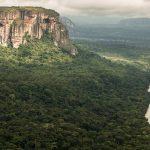 Guaviare, en première ligne contre la déforestation