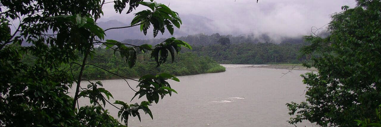 The Rio Napo crossing trough the rainforest