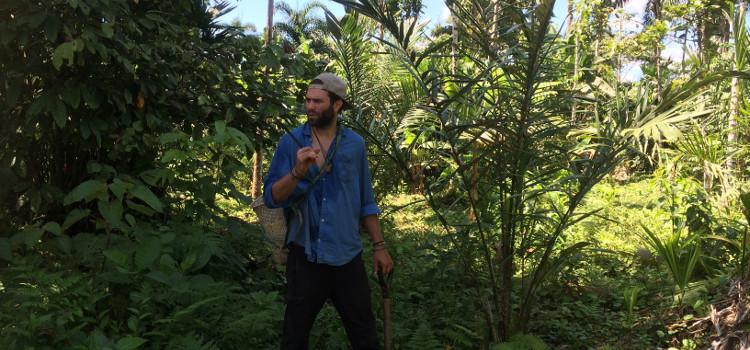 Stagiaires étudiants reforestation et agroforesterie