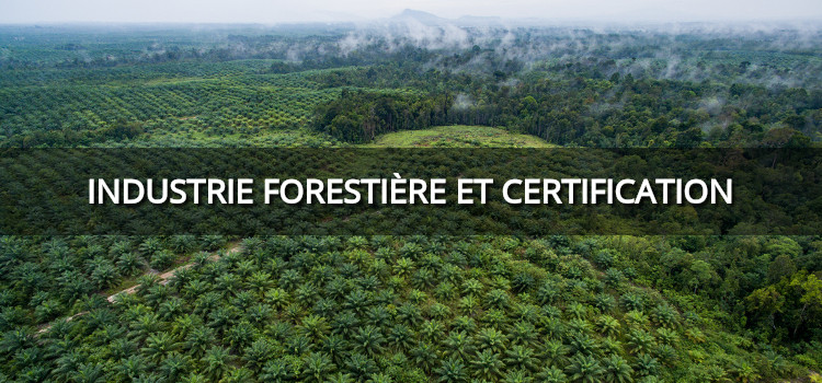 La certification durable de l'industrie forestière