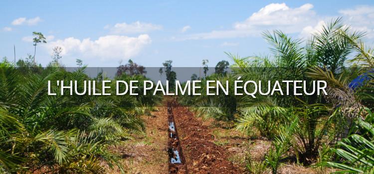 L'exploitation de l'huile de palme en Amazonie équatorienne