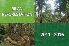 Retour sur 6 années de reforestation participative