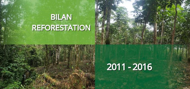 Bilan des actions de reforestation