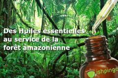 Projet Miimosa – Des huiles essentielles au service de l'Amazonie