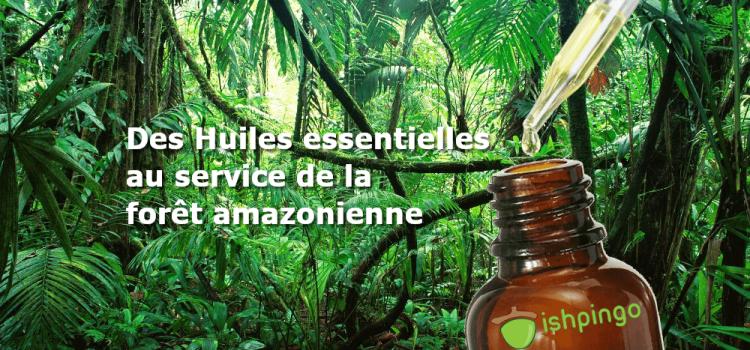Projet Miimosa, des huiles essentielles au service de l'Amazonie
