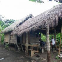 Cabane de formation des populations à l'agroforesterie