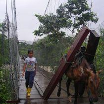 Transport du bois d'oeuvre
