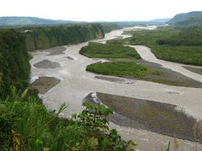 Paysage d'Amazonie équatorienne